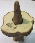 Cypress Slice & Knee Well Dried - Two Pcs